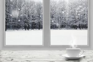 Overview of winter forest through a glass window. Exterior cold weather caulk needs the right sealant