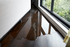 home with water damage looking for Waterproofing Companies