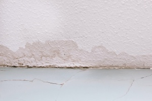 water damage on the floor of a home without waterproofing