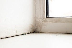Crack between the sill window. Caulking interior windows is a cost-effective and quick task