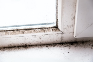 mold growing on a door or someone learning how to prevent mold growth