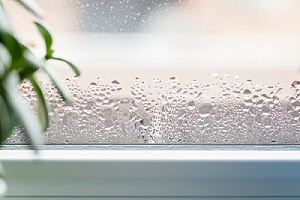 Water condensation on window glass needing glazing